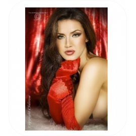 Rode Handschoenen in satijn